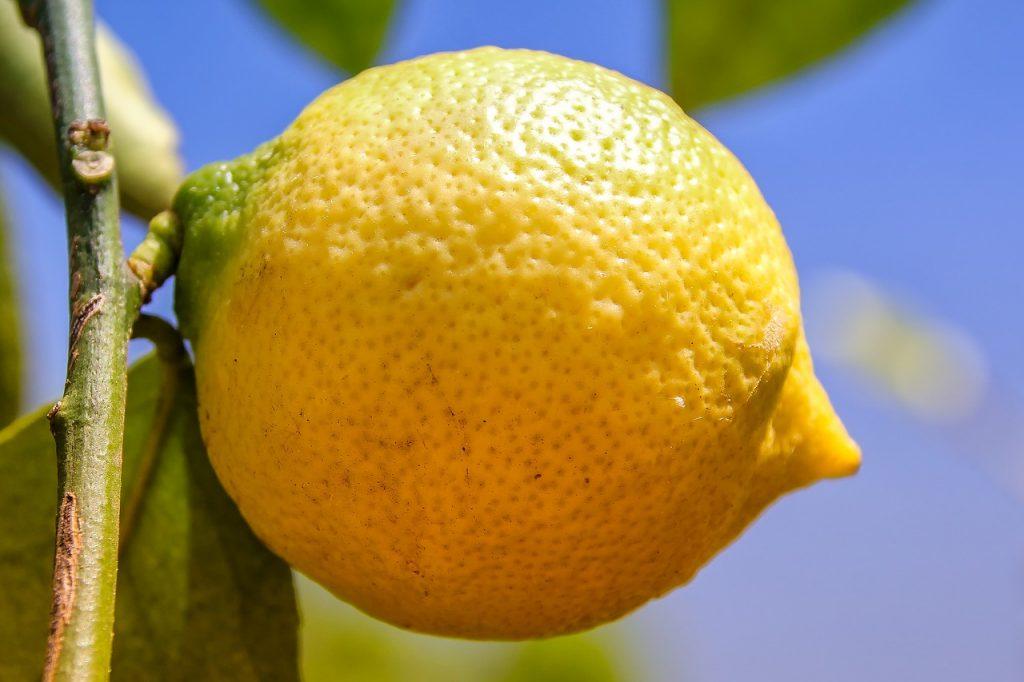 Guardar Limón